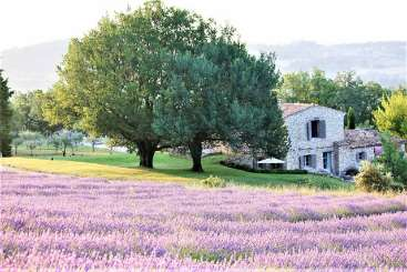 Villa YNF BER (La Bergerie) at Provence - Luberon Area, France, Family-Friendly, Pool, 4 Bedroom, 4 Bathroom, WiFi, WIMCO Villas